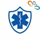 Emblema, Patch Estrela da vida Escudo